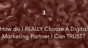 "Slide from presentation by Susan Staupe on digital marketing. Slide says ""3 How do I really choose a digital marketing partner I can trust?"""