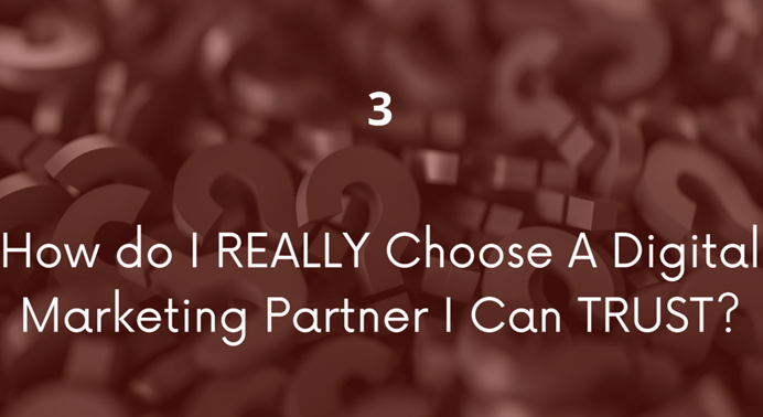 "Slide from presentation by Susan Staupe on digital marketing. Slide says ""3 How do I really choose a digital marketing partner I can trust?"""